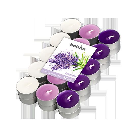 podgrzewacze-zapachowe-bispol-4h-kwiat-kaktusa-6szt.jpg